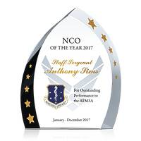Military NCO of the Year Award