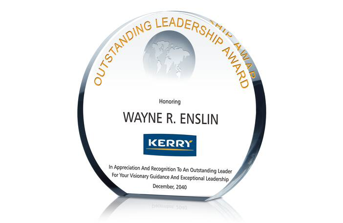 Leadership Excellence Award  Excellence Award Wording