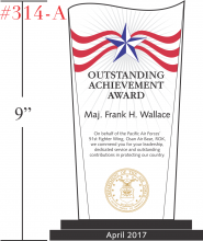 US Air Force Outstanding Achievement Gift
