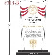 US Air Force Lifetime Achievement Award Wording Sample by