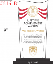 US Air Force Lifetime Achievement Award