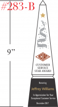 Customer Service Star Award Sample