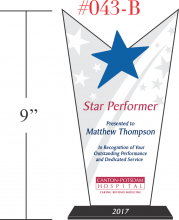 Star Performer Employee Award