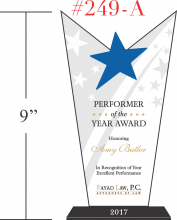 Star Performer of the Year Award