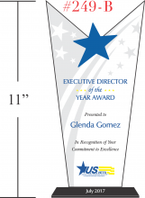 Executive Director of the Year Award