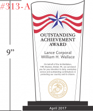 USMC Outstanding Achievement Award