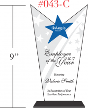Excellent Employee of the Year Award