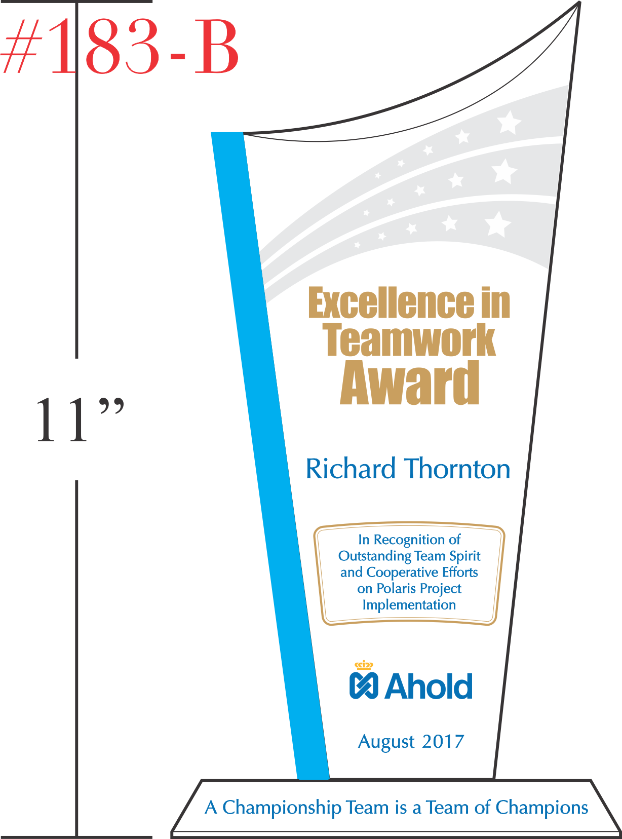 Excellence in Teamwork Award