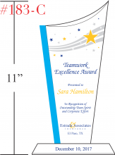Teamwork Excellence Award