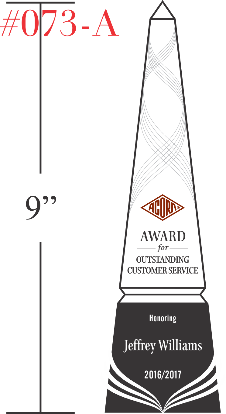 Award for Outstanding Customer Service