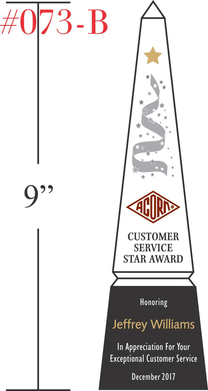 Customer Service Star Award Sample
