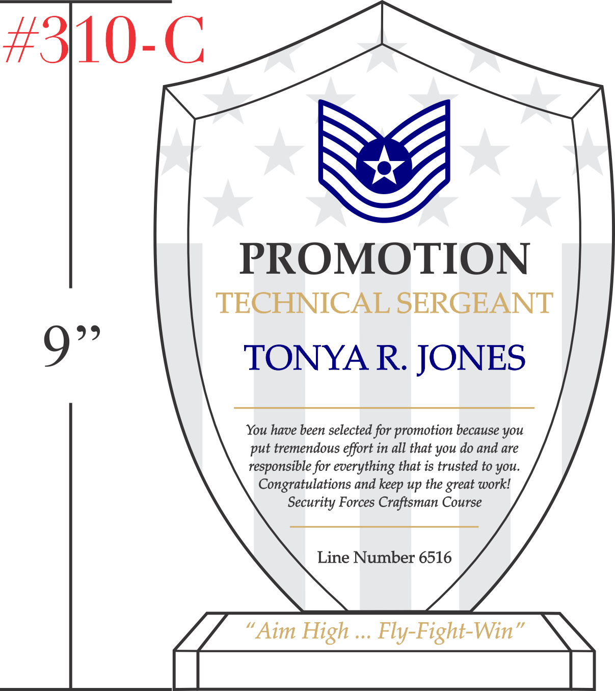 Air Force Sergeant Promotion Award