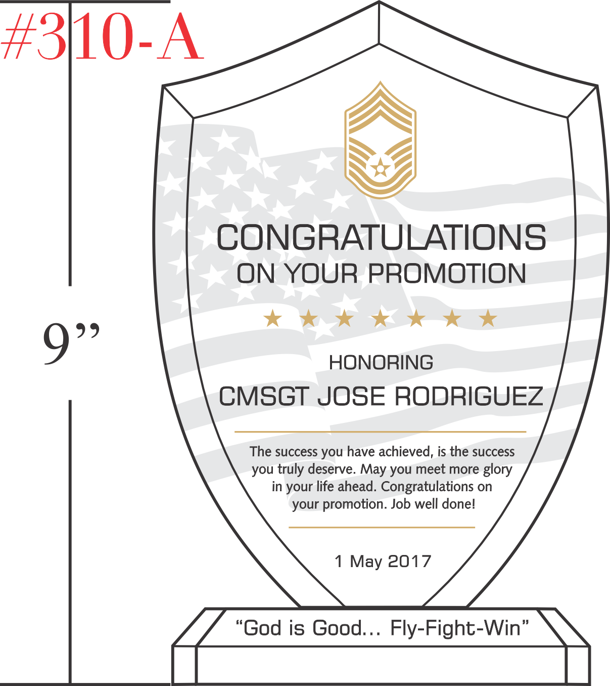 USAF Congratulations on Promotion Gift